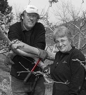 Denise and Richard MacDonald - Aurora Golden Gala orchardists