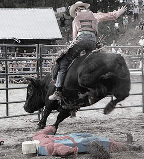 featured-summerland-bull-riding