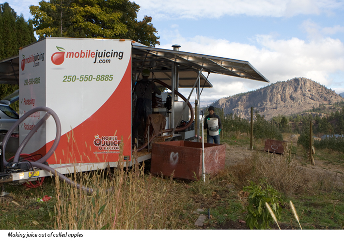 Mobile Juicing from Vernon, BC pressing apples tomake juice
