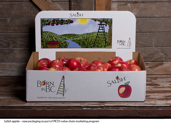 Salish apples in new packaging created by Unlimited Vision in Summerland BC