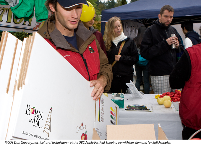 Dan Greogory of PICO Summerland with Salish apple boxes