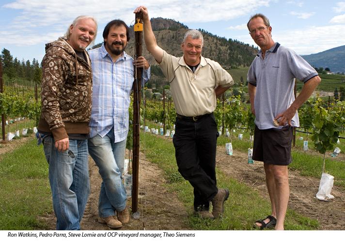 Ron Watkins, Pedro Parra, Steve Lornie, and Theo Siemens