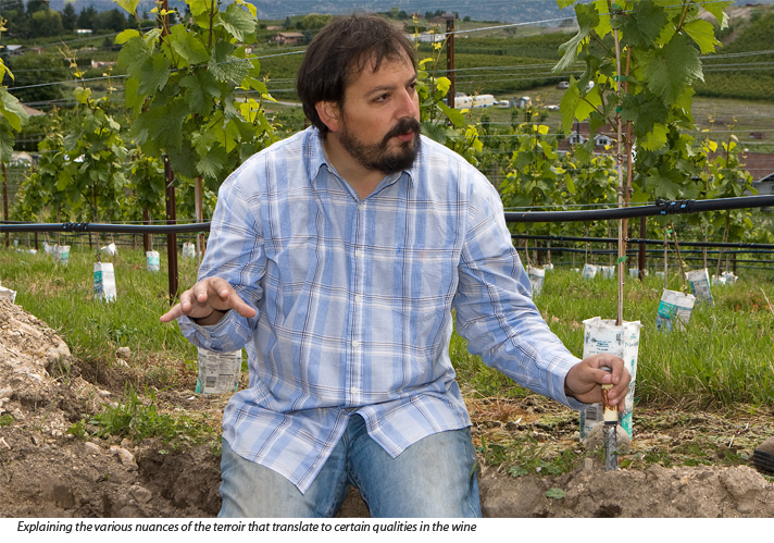 Pedro Parra, winery consultant from Chile