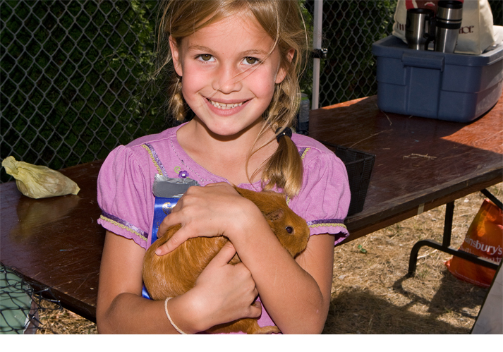 First prize ribbon for guinea pig at 2012 fall fare